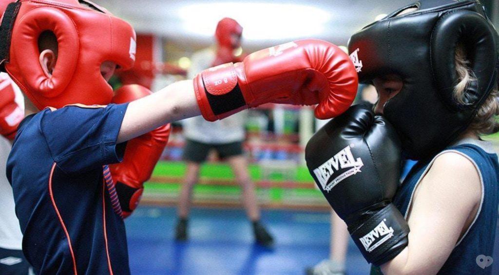 Как выбрать боксерские перчатки для тренировок